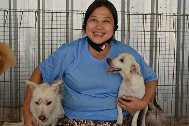 This picture taken on June 30 shows Indonesian doctor Susana Somali smiling with dogs at her rescue shelter in Jakarta. The sprawling complex, home to some 1,400 canines, has become a desperate refuge for at-risk animals during the COVID-19 coronavirus pandemic, as cash-strapped owners increasingly abandon pets or sell them into the Southeast Asian nation's controversial dog meat trade.