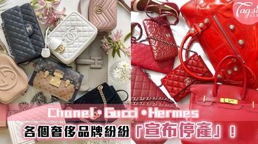女生們的噩夢!GUCCI、Hermès、CHANEL宣佈暫停生產!