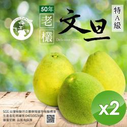 【預購】水果爸爸-FruitPaPa 葫蘆墩50年老欉特A級柚子文旦禮盒10台斤/箱x2箱