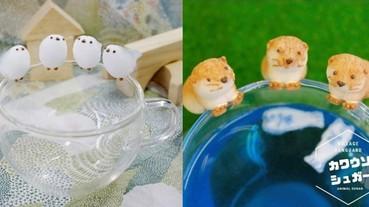 買起來!超萌白鳥、水獺化身超療癒「動物杯緣子」 但另一個隱藏版功能你可能想不到!