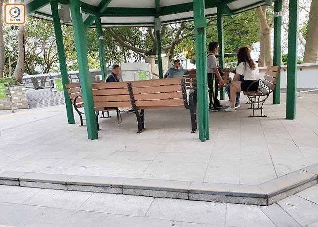 下午4時許,大媽與多中年男子在蝴蝶灣公園內一處涼亭聊天。