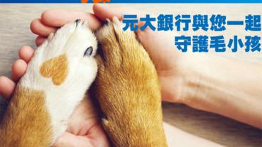 元大守護毛小孩 投保寵物險享回饋