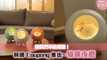 貓奴們不能錯過!韓國 Coupang 推出超療癒「貓咪夜燈」~每晚陪著你!
