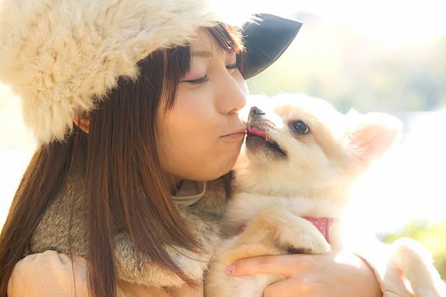 คนญี่ปุ่นชอบเลี้ยงสุนัขพันธุ์อะไรน้า? 10 อันดับสายพันธุ์สุนัขที่คนญี่ปุ่นนิยมเลี้ยงมากที่สุด ในปี 2019!