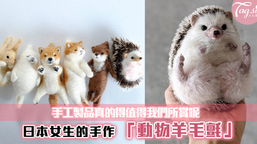 手工製品真的得值得我們欣賞呢~日本女生的手作「動物羊毛氈」,每一款都好可愛呢!