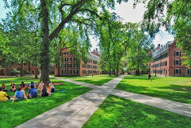 Yale, Brown and Princeton universities were among more than a dozen elite schools that endorsed Harvard University's practice of considering race as a piece of its admissions processes.