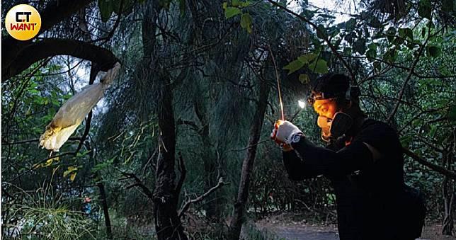 【浪浪送行者2】貓屍掛樹頭  「不要怕,叔叔來救你們」