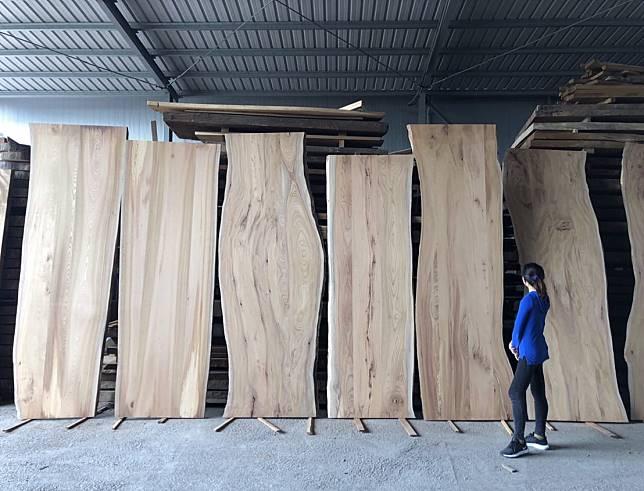 木材拍賣週