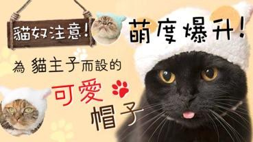 【貓奴注意!】萌度爆升!為貓主子而設的可愛帽子
