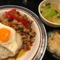 ガパオライス - 実際訪問したユーザーが直接撮影して投稿した西新宿タイ料理タイ国屋台食堂・西新宿ソイナナの写真のメニュー情報