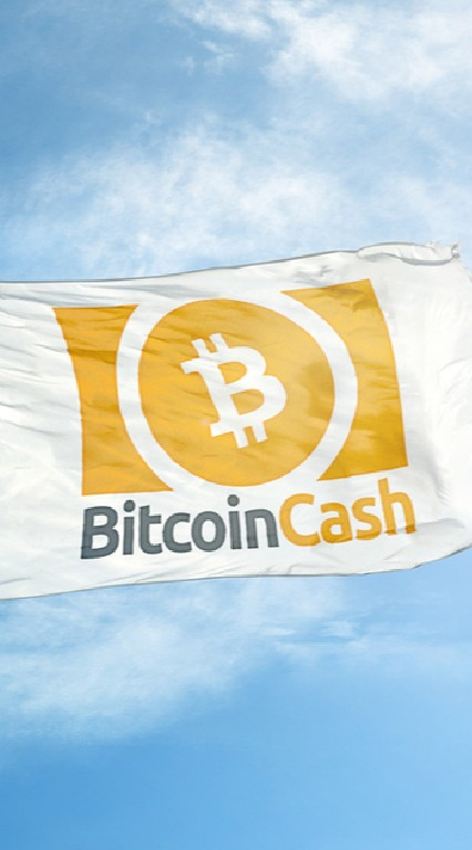 BitcoinCash/BCHについて語る部屋