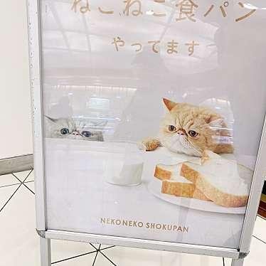 ねこねこチーズケーキ ルミネ北千住店のundefinedに実際訪問訪問したユーザーunknownさんが新しく投稿した新着口コミの写真
