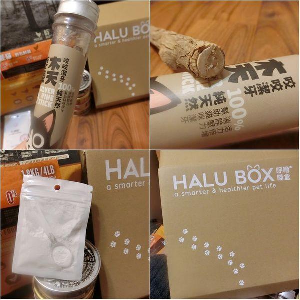 HALU BOX (16).jpg