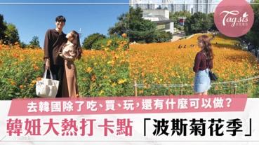 涼涼的秋風襯托著美美的鮮花,就像浪漫韓劇劇情一樣!韓妞大熱打卡點「奧林匹克公園波斯菊」