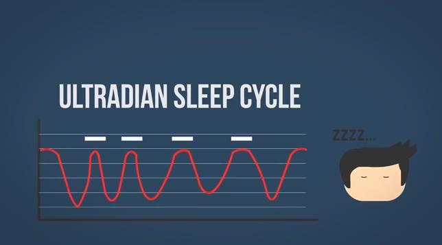 Ngga cuma dangdut yang punya ritme… untuk tidur pun juga punya ritmenya namanya Ultradian Sleep Cycle