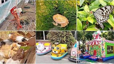 【台北景點】五股準園休閒生態農場-可以餵小動物、釣小龍蝦、DIY的好玩親子景點