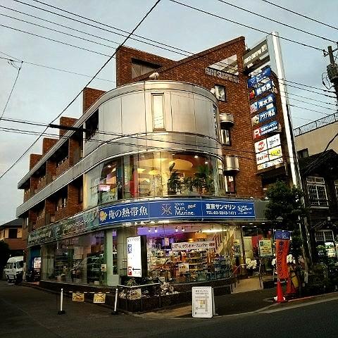 東京 サン マリン