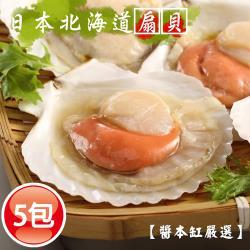 【醬本缸嚴選】日本北海道巨無霸半殼扇貝5包24粒 (10-12/ 8p/ KG/包)