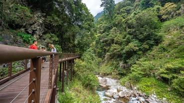 受保護的內容: 台中景點【八仙山國家森林遊樂區】台灣八景之一.親子踏青一日遊