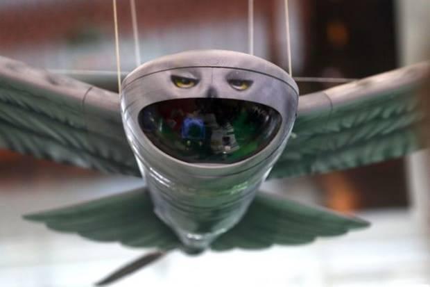 Download 57+ Foto Gambar Burung Hantu Full Hd HD Paling Bagus