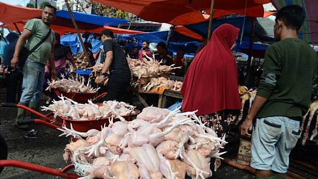 Warga berbelanja daging ayam pada hari pertama perayaan Tradisi Meugang menyambut Idul Adha 1440 Hijriyah di pasar tradisional Peunayung, Banda Aceh, Aceh, Jumat 9 Agustus 2019. Pada hari pertama tradisi meugang Idul Adha 1440 Hijriyah, harga daging ayam naik dari Rp35.000 menjadi Rp40.000 per ekor akibat meningkatnya permintaan pasar, sedangkan stok mencukupi. ANTARA FOTO/Ampelsa