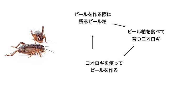 有關方面現嘗試用酒糟來餵飼蟋蟀,希望能夠構成了物盡其用的良性循環。(互聯網)