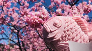 日本人賞櫻都吃什麼點心?盤點在日本賞櫻必吃甜點