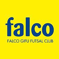 FALCO GIFU