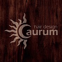 hair design aurum