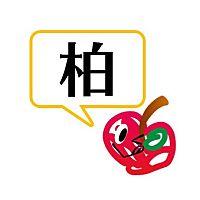 AppBank Store 柏