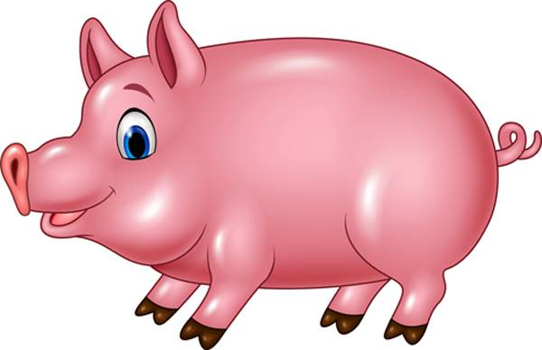 101 Gambar Babi Warna Pink Kekinian