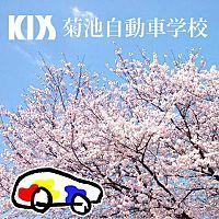 KDS菊池自動車学校