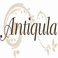 hair make Antiqula