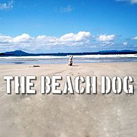 the Beach Dog