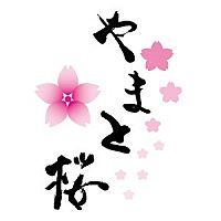 花魁体験スタジオ やまと桜