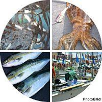 地魚料理 重美屋