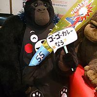 ゴーゴーカレー松任バイパス店