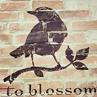 to blossom 湘南店
