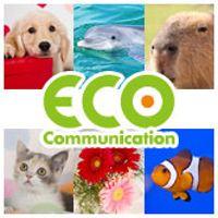 TCA東京ECO動物海洋専門学校