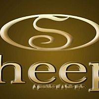 sheep?