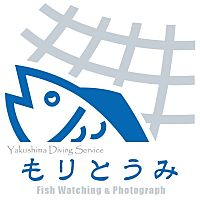 屋久島ダイビングサービス もりとうみ