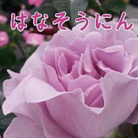 花創人ガーデニング教室