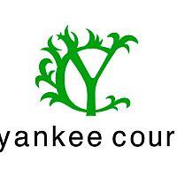 yankee court