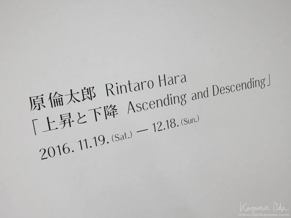 20161212_02.jpg
