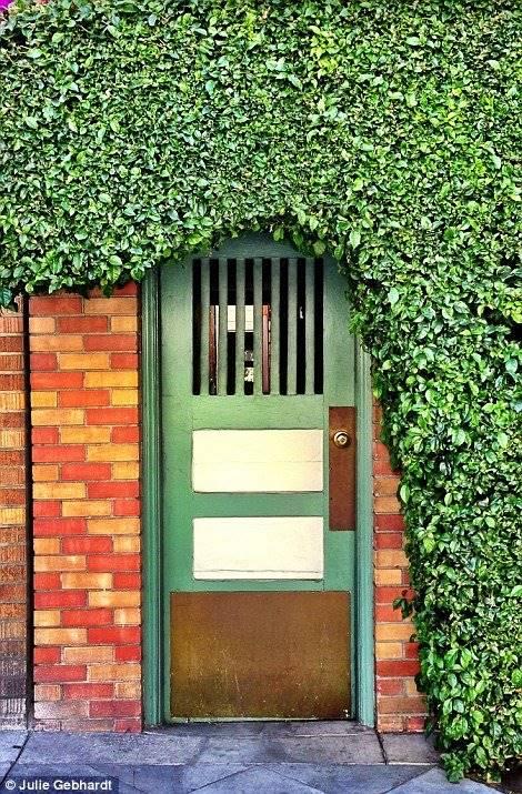 Hasil gambar untuk doortraits