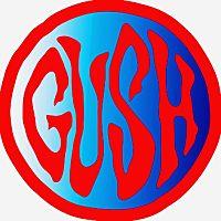 GUSH hair